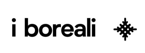 logo i boreali per evento 20